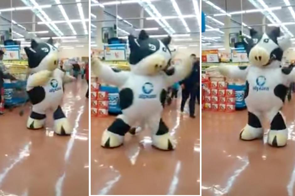 hombre-vaca-bailando