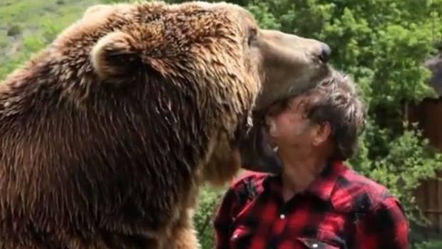 oso grizzlie