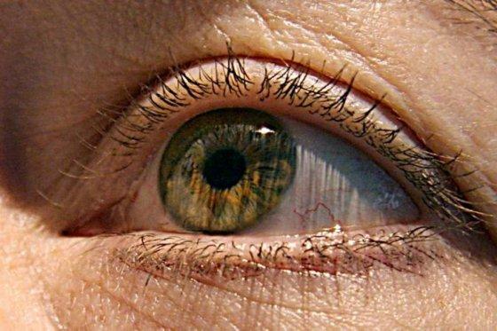 Celulas oculares