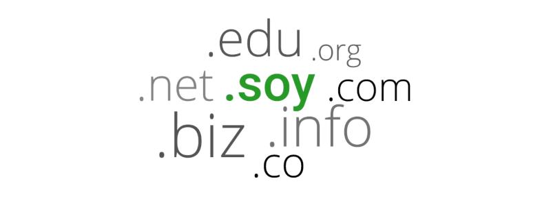 Soy-google