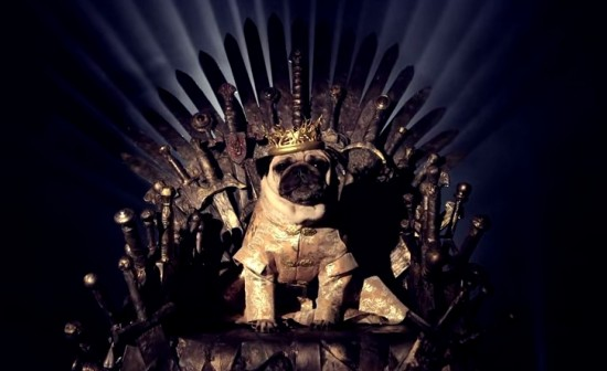 parodia canina de game of thrones