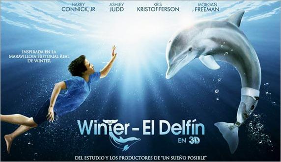 winter-el-delfin-2
