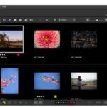 Nikon lanza NX Studio, un nuevo software que permite la visualización y edición sin problemas de imágenes fijas y video